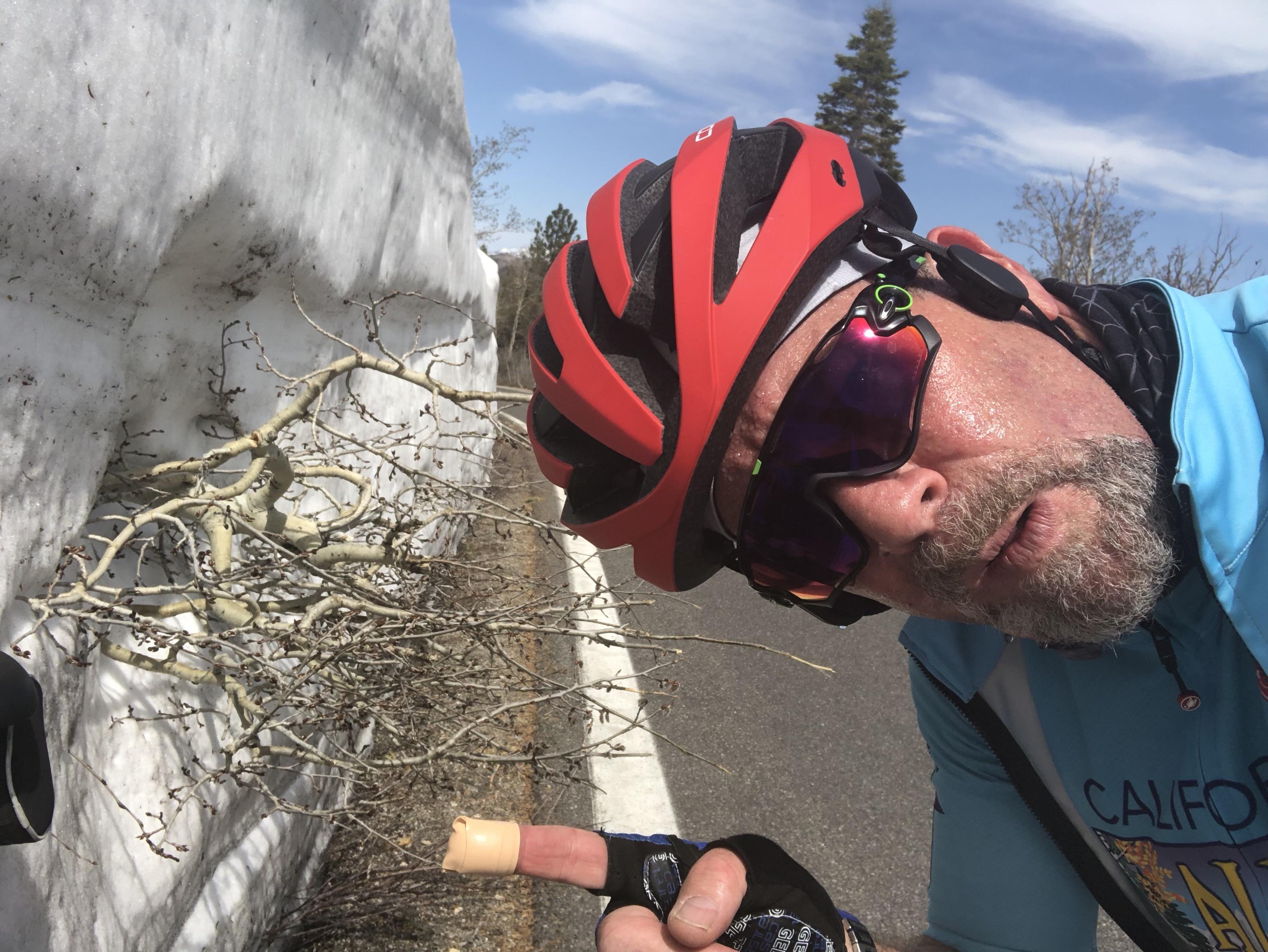 Rides – California Alps Cycling