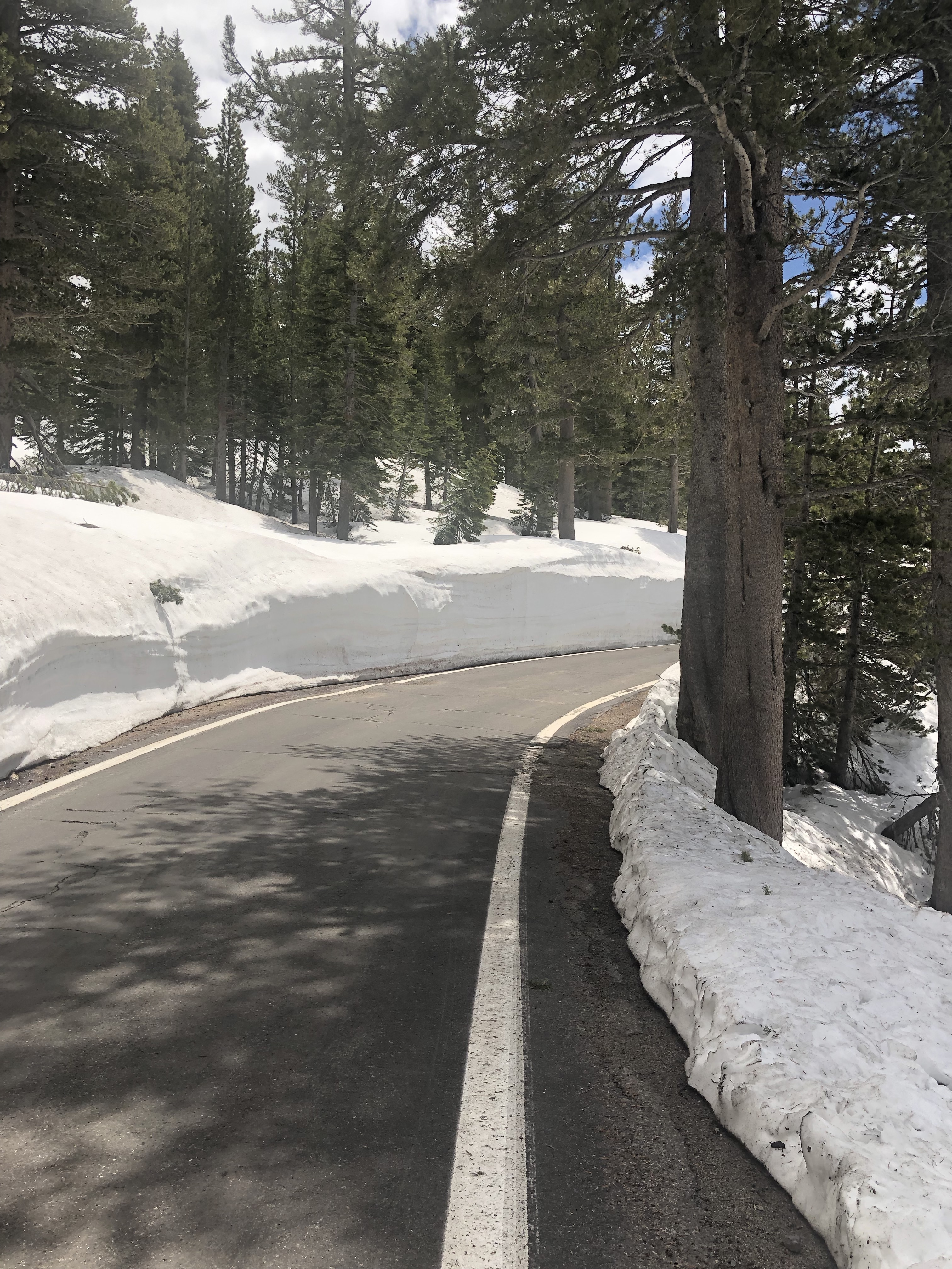 California Alps Cycling – Let's Kick Some Passes' Asses!™
